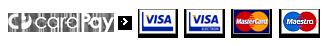 CardPay - Akceptujeme karty Visa, Visa electron, MasterCard, Maestro, Dinner's club